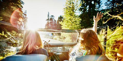 Light, Tree, Sunlight, Yellow, Grass, Summer, Blond, Photography, Fun, Sitting,