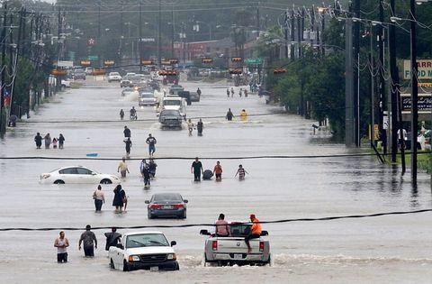 People, Urban area, Street, Pedestrian, City, Traffic, Vehicle, Rain, Road, Downtown,