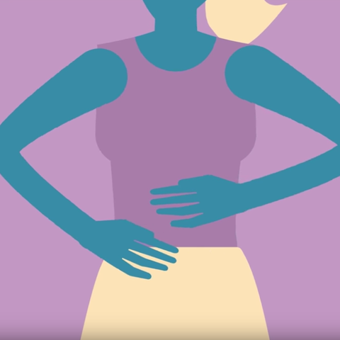 Digestive System Facts - How Does the Digestive System Work