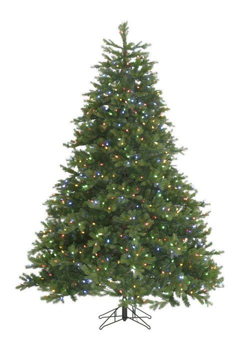 Christmas tree, Tree, balsam fir, shortleaf black spruce, Colorado spruce, White pine, Yellow fir, oregon pine, Canadian fir, Spruce,