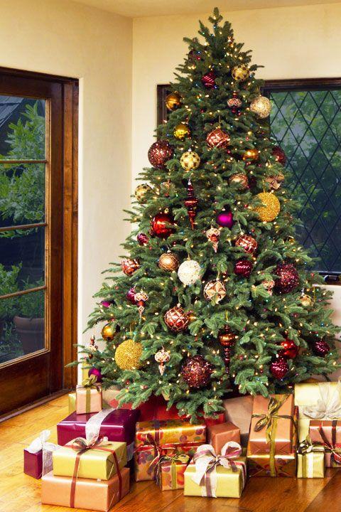 Christmas tree, Christmas decoration, Christmas, Christmas ornament, Tree, Houseplant, Colorado spruce, Plant, Evergreen, Christmas eve,