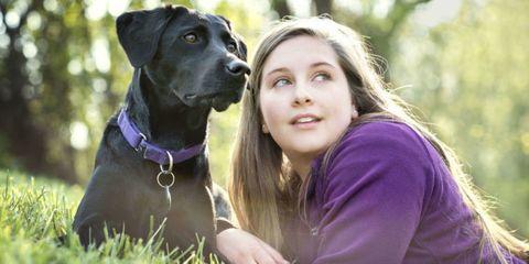 Dog, Canidae, Mammal, Dog breed, Guard dog, Carnivore, Great dane, Companion dog, Sporting Group, Labrador retriever,