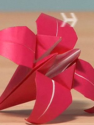 Origami Lily Instructions - YouTube | 399x300