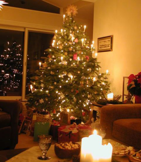 The Tradition Of Christmas Trees: Family Christmas Traditions