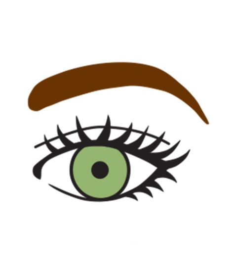 eyebrows with smaller eyes