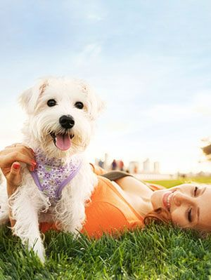 Health Tips - The Health Benefits of Pets at WomansDay com