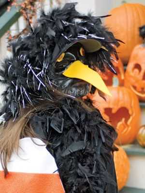 Halloween Costumes For Kids At Womansday Com Crow Costume