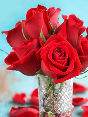 How To Preserve Roses At Womansdaycom Flower Drying Tips