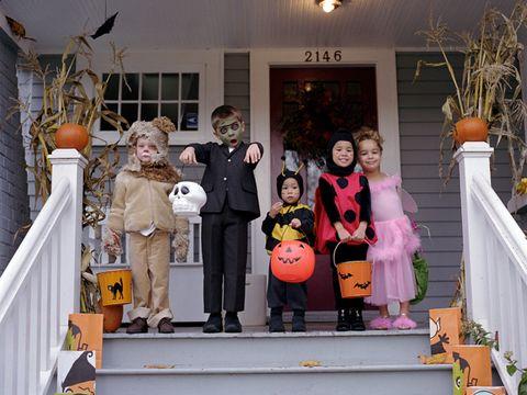 Orange, Toy, Stairs, Porch, Flowerpot, trick-or-treat, Handrail, Houseplant, Baluster, Pumpkin,