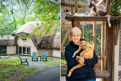 woman with cat and hospice