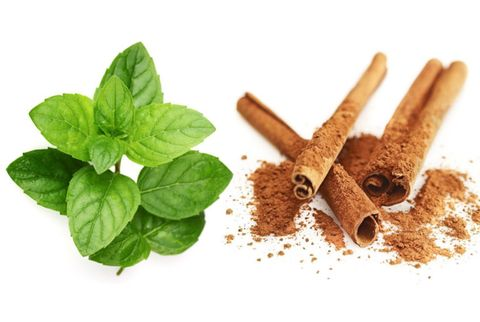 mint and cinnamon