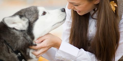 """<p>They may be called scaredy-<em>cats</em>, but many dogs have serious anxieties. Whether your canine cowers at the sight of a stranger or runs for cover during a thunderstorm, your pooch is far from the only fraidy-pup. """"Some dogs are born with certain fears, while others have scary experiences,"""" says Kristen Collins, Director of Anti-Cruelty Behavior Services at the American Society for the Prevention of Cruelty to Animals (ASPCA). Luckily, no matter how the fear developed, desensitizing your dog to triggers and teaching him to associate them with something positive can neutralize the problem. Read on for ideas for soothing the most common canine anxieties. </p>"""