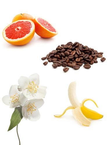 flowers, coffee beans, grapefruit, banana and jasmine blossoms