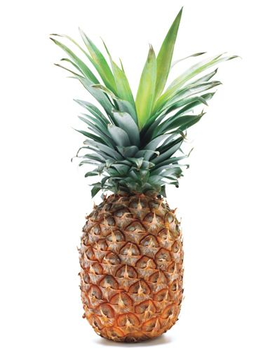 <p>Citrus fruit isn't the only vitamin C–rich produce that's in season now. Though canned pineapple is about 21¢ per cup cheaper, the fresh fruit has an enzyme that aids digestion, so add this tropical fruit to your immunity-boosting arsenal. Read on to learn how to buy it fresh, cut it and cook it. </p> <p><strong>Buyer's Tip</strong> <br />Look, lift and sniff. The leaves should be crisp and green and the skin should be golden yellow. Also, a ripe fruit feels heavy, which indicates its juiciness, and has a sweet aroma, says Robert Schueller, produce expert at Melissa's Produce, an exotic fruit distributor.</p> <p><strong>Keep it Fresh</strong> <br />Pineapple with a sweet fragrance will last at room temperature for 7 days or in the fridge for up to 2 weeks (twist off the leaves before refrigerating to save space).</p> <p><strong>Save the Core</strong> <br />It makes a great syrup to drizzle over pound cake or fruit, or mix into teas, club sodas or cocktails. Cut into 1-in. pieces and simmer with 1 cup sugar and 1 cup water (do not stir) until the sugar dissolves, about 4 minutes. Let cool, strain and refrigerate for up to 1 week.</p>