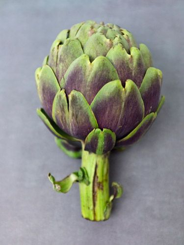 <p>Eat your way to their tasty, tender heart, or toss canned or frozen artichokes into salads and pastas. Here's how to enjoy every bite.</p><p>→ Fresh: Artichokes should be firm and heavy for their size, with the outer leaves just beginning to open. To store, sprinkle with water and refrigerate in an airtight bag for up to a week.</p><p>→ Canned: Artichoke hearts in cans are usually packed in brine. Their soft texture makes them ideal for creamy dips and casseroles. Rinse and pat dry before using to remove any excess salt.</p><p>→ Marinated: Hearts marinated in oil and dried herbs (like oregano and thyme) have a strong flavor. Use them in a recipe only if specifically called for, as they can overpower a dish. They're delicious tossed into salads, used as a pizza topping or chopped and added to a sandwich.</p><p>→ Frozen: Artichoke hearts from the freezer case are the healthiest option after fresh as they have no added calories or fat. They're only partially cooked, so they keep their texture better than canned or jarred when they're roasted or sautéed. Thaw and pat dry before using to avoid ending up with too much liquid in your dish.</p>