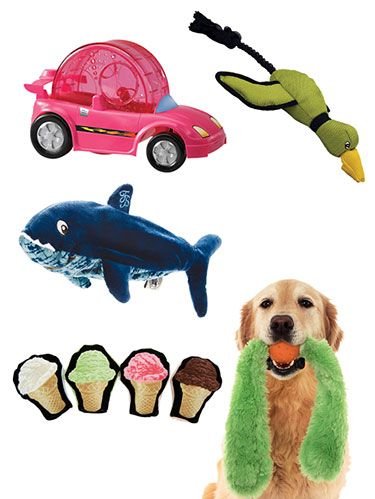 <p>Pet playtime just got a whole lot more fun, thanks to these playthings. From cruisers for critters to a bowling game for birds, your cat, dog, bird and even hamster are sure to love these top toys. Keep clicking to find out what you should be shopping for.</p>
