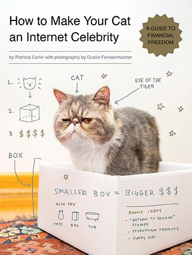 """<p>Your friends always like the pictures you post of your pet on Facebook, but could your furry family member be destined for stardom? We asked our Facebook fans to send in photos of their cute kitties, and Dustin Fenstermacher, the photographer for the new book <a href=""""http://www.amazon.com/How-Make-Your-Internet-Celebrity/dp/1594746796"""" target=""""_blank""""><em>How to Make Your Cat an Internet Celebrity: A Guide to Financial Freedom</em></a>, took the time to offer his hilarious take on how to up the odds for feline fame. Click to see which cats you may be following on Twitter next and pick up tips for getting other animal lovers to notice your little love.</p>"""