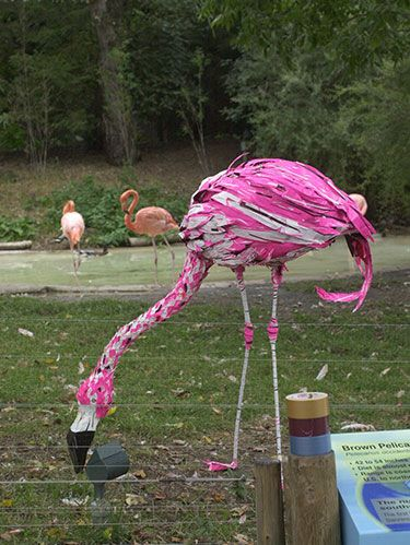 "<p class=""FreeForm"">From jewelry to clothing to even vehicles, this sticky substance can do more than you ever could have imagined, like create these <a href=""http://www.duckbrand.com/"" target=""_blank"">Duck Brand</a> pink flamingoes, which took over the Columbus Zoo in 2003. And now that the traditionally silver tape comes in a variety of colors and patterns, it's <a href=""http://www.womansday.com/home/craft-ideas/duct-tape-uses%23slide-1"" target=""_blank"">a crafting tool</a> you'll want to stock up on—especially after you see these 10 other projects you can make with it.</p>"