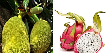 <p>A star, a blowfish and a long-fingered hand aren't exactly regulars on your menu, but their virtual replicas and seven other wacky-looking items are all good-for-you fruits. Instead of passing these by in the grocery store, click through to find out the unexpected health benefits hiding in the freakiest fruits out there. Plus, pick up some yummy serving suggestions.</p>