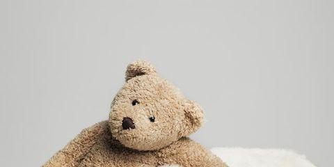 Stuffed toy, Organism, Brown, Toy, Textile, Teddy bear, Plush, Dog, Bear, Baby toys,