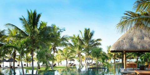 Resort, Arecales, Reflection, Shade, Palm tree, Tropics, Swimming pool, Resort town, Reflecting pool, Water feature,
