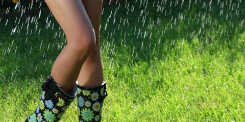 Grass, Green, Human leg, Calf, Grass family, Groundcover, Lawn, Meadow, Foot, Ankle,