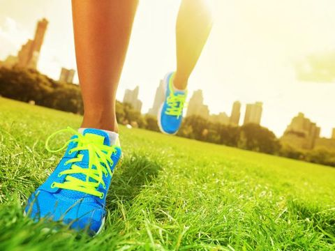Grass, Green, Human leg, People in nature, Sunlight, Athletic shoe, Majorelle blue, Electric blue, Sneakers, Meadow,
